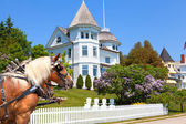 Wedding Cake Cottage on West Bluff Road - Mackinac Island