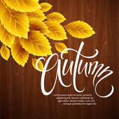 Autumn background with leaf and wood texture Vector illustration EPS 10