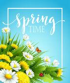 Čerstvý jarní pozadí s trávou, pampelišky a sedmikrásky. Vektorové ilustrace