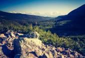 Ročník fotografické Tatrách krajiny