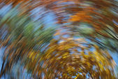 Herbstszenen Windung