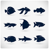 Flat fish silhouette
