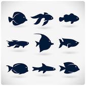 Sziluettjét lapos hal
