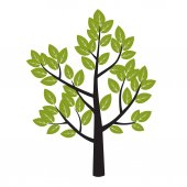 Tree and Green Leafs Vector Illustration