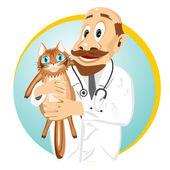 Idősebb férfi állatorvos gazdaság macska
