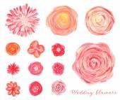 Kézzel rajzolt esküvői virágok készlet