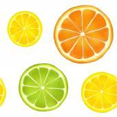 Vzorek akvarel citrusových plodů