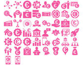 Euro Business Iconst These flat icons use pink color Vector images are isolated on a white background