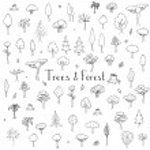 Постер, плакат: Trees and Forest icons set