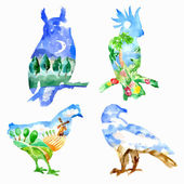 Four watercolor vector silhouettes of birds (owl chicken eagle parrot) with views - night countryside mountains tropic