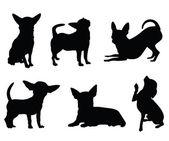 Chihuahua cane illustrazione vettoriale
