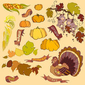 Thanksgiving elements set with turkey pumpkin corn grape and wheat isolated on light background