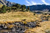 Klidný proud v údolí řeky Estanyo, Andorra