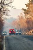 Civil protection of Friuli Venezia Giulia in action for extinguish a fire in the forest