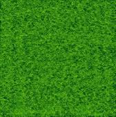Zöld fű focipálya