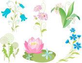 Wilt flowers set