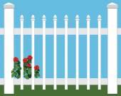 Květiny v plotu
