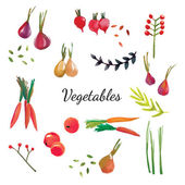 Natural fabric dyeing Traditional cotton and silk dyeing from plants and vegetables Vector illustration
