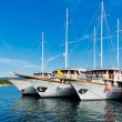 Постер, плакат: Yachts in the port