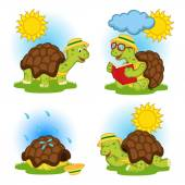 turtle reading a book and hides from the rain - vector illustration eps