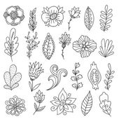 Set of vector abstract flowers and plants Hand drawn floral clip art Beautiful branches and petals Doodle leaves collection