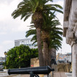 Постер, плакат: Cannon in Gibraltar