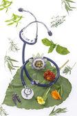 Alternative Medizin Kräuter und Stethoskop auf Blatt
