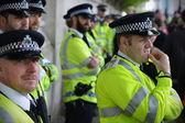 Policie zavést během demonstrace proti vládě veřejný sektor