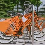 Постер, плакат: Bikes for rent