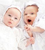 Zwei wunderschöne babies