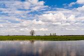 Rzeka Narew - Podlasie