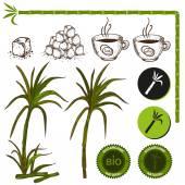 Cukrové třtiny, s cukrem a šálků kávy