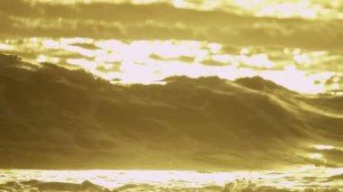 Golden sunset over ocean waves — Stock Video