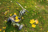 Autumn child bike — Stock Photo
