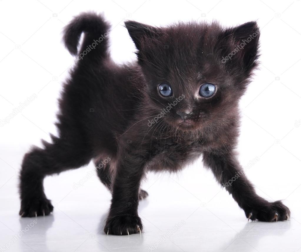 fekete fekete farkukat japán pornó mobil