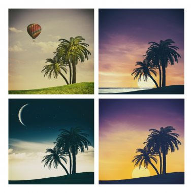 Set of tropical backgrounds