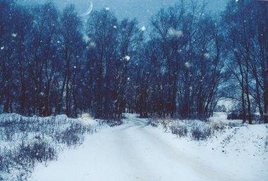 doğal kış manzarası