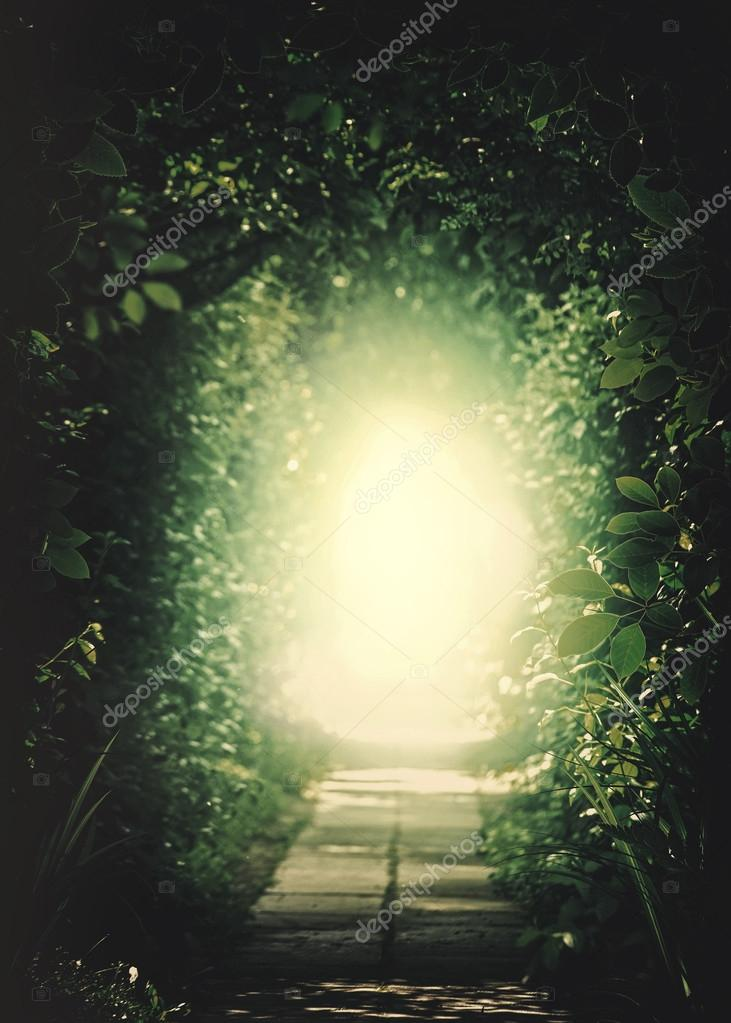 Tunnel In the Forest. Natural background