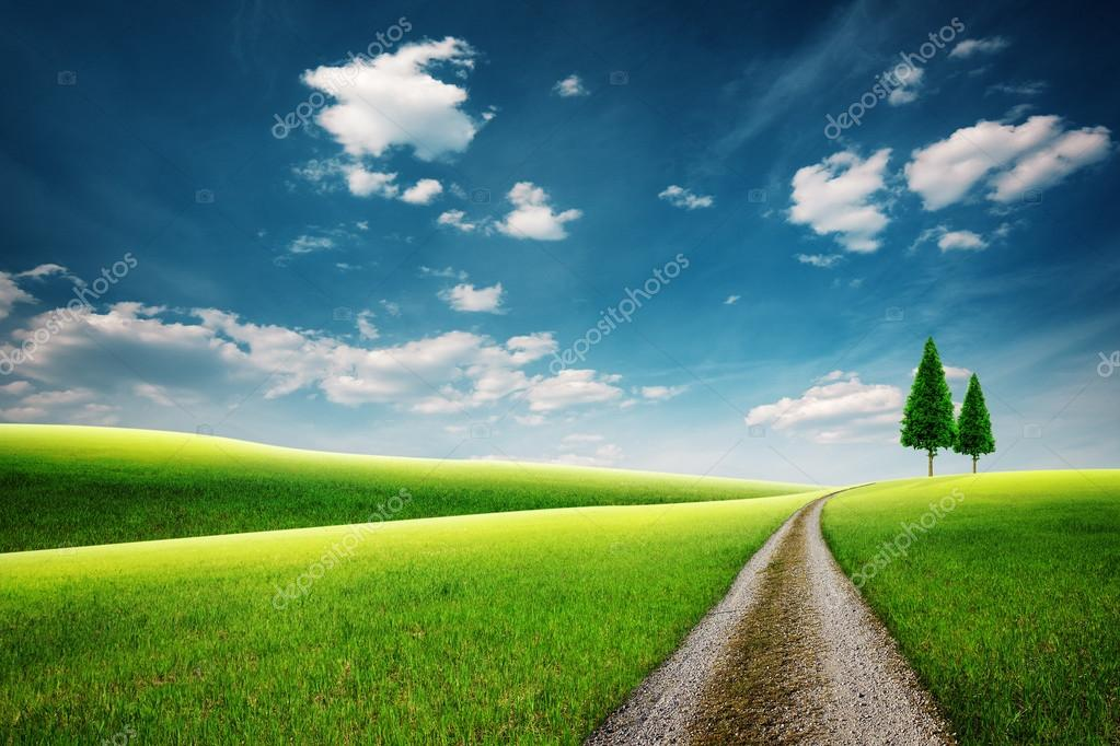 Country road with couple of trees on hills