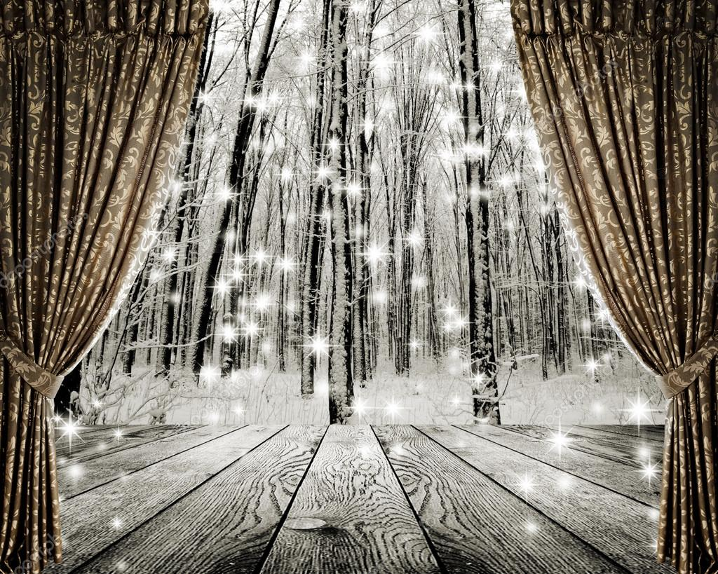 Winter forest and stars