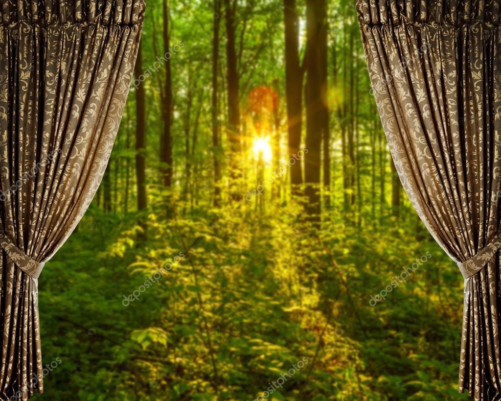 gordijnen en bos herfst achtergrond stockfoto