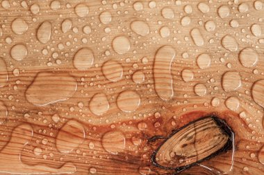 Water drops on a wooden texture