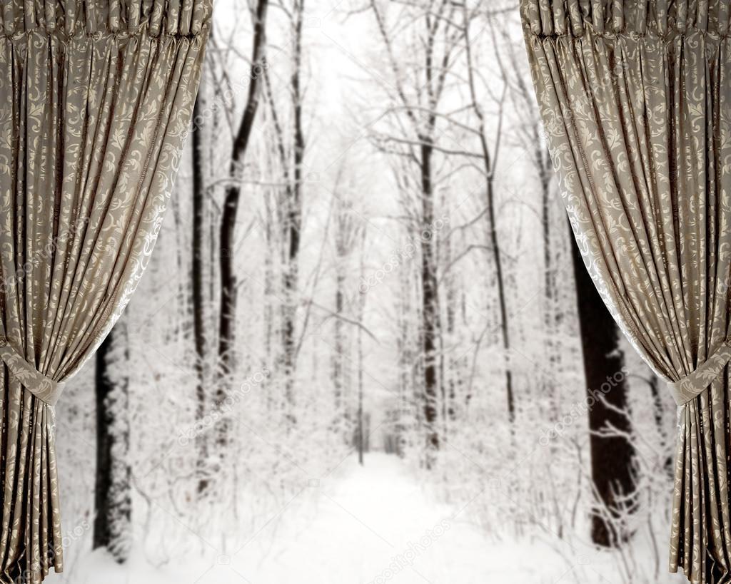 gordijnen op de winter bos achtergrond stockfoto