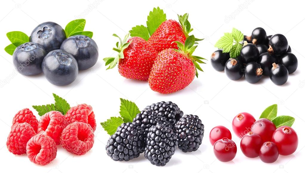 berry collage stock photo dionisvera 84495116
