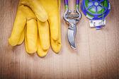 Fotografie Ochranné rukavice a zahradní nůžky