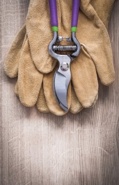 Sharp pruning shears and safety gloves