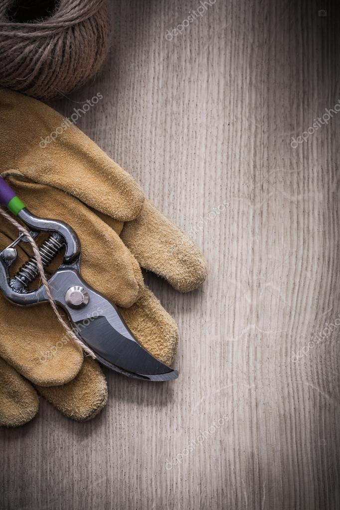 safety gloves, secateurs and skein of twine