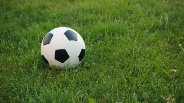 Fotbalový míč na poli s přírodní trávou