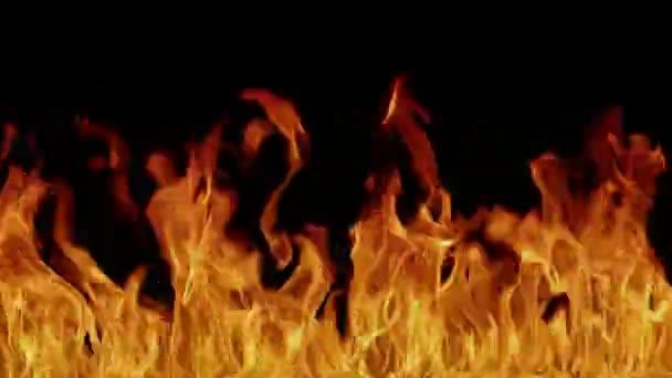 1080p video - hell peklo ohně pozadí. oheň hořet horké čarodějnictví video-art.