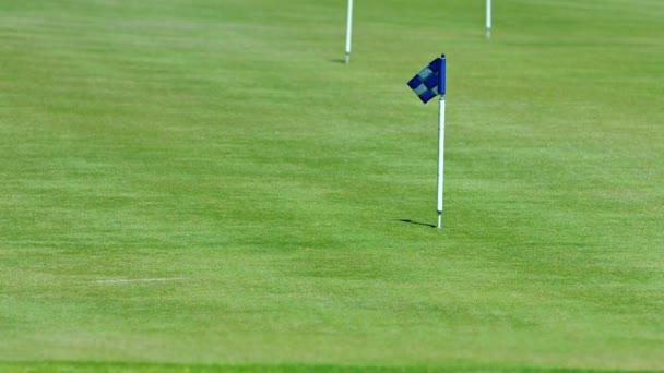 Bandierina a scacchi blu indica il foro su un campo da Golf